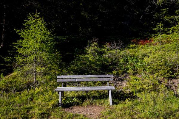 hebalmsee-norbert-eder-photography-15